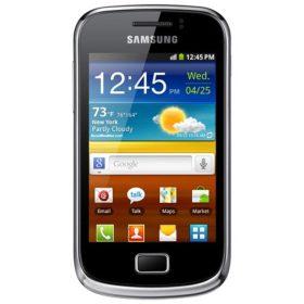 Samsung Galaxy Mini 2 tok